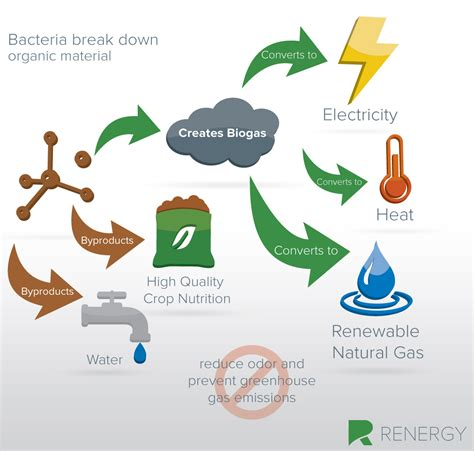 anaerobic digestion picture 7