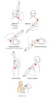 joint movements anatomy picture 5