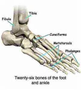 pain in bones picture 3
