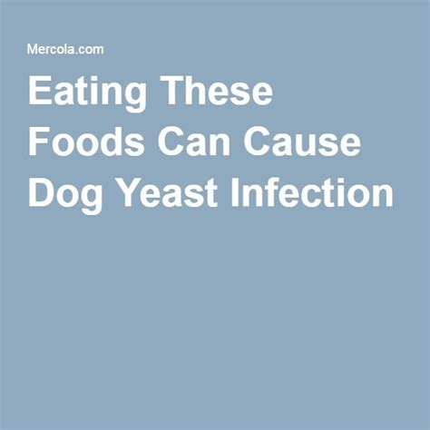 what can cause a yeast infection picture 9