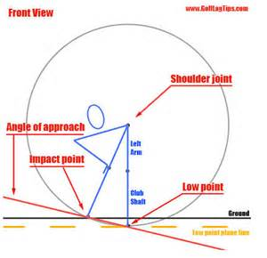 erection angle at various ages picture picture 3