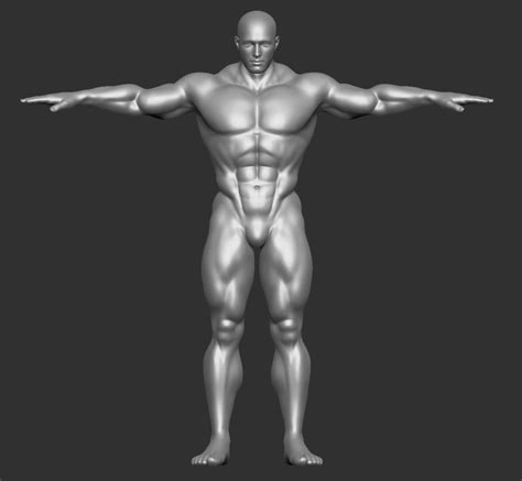 male muscle free picture 13