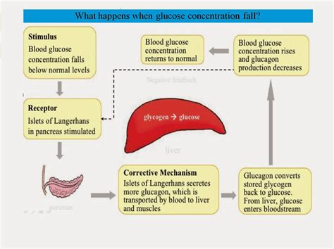 controlling glucose levels with liver disease picture 6