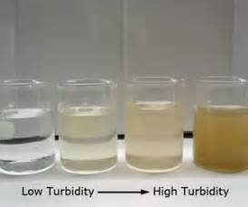 measures turbidity of bacterial growth picture 7