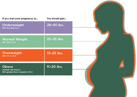 weight gain with pregnancy picture 15