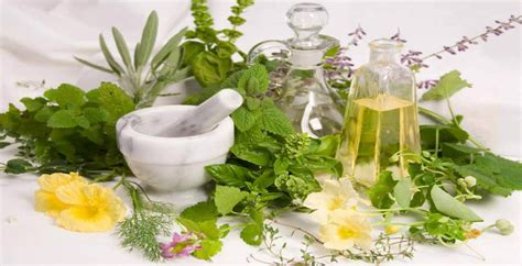 herbal cleanse help with hemorrhoids picture 2