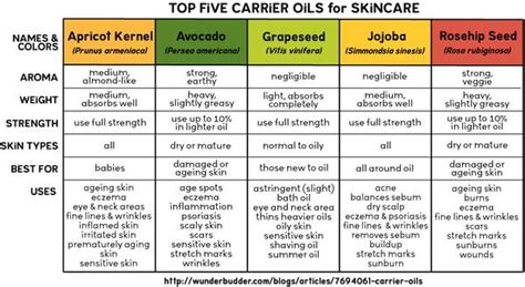 anti aging natural face carrier oils picture 13
