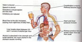 percentage of alcoholics with cirrhosis liver picture 5