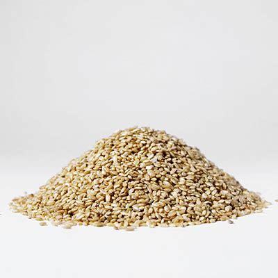 whole grains and fat burning picture 9