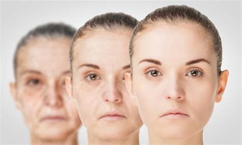 science daily aging research picture 1