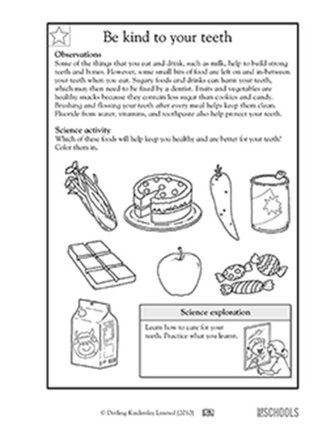 first grade theme learning about teeth picture 11