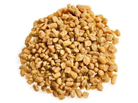 fenugreek seed picture 13