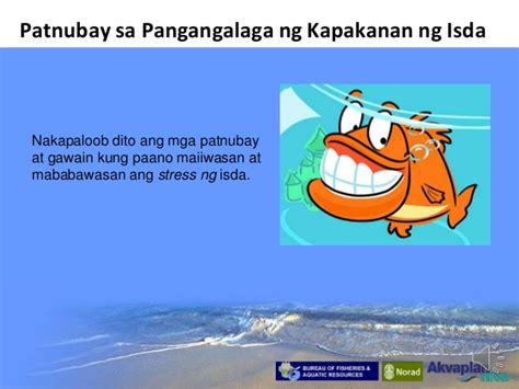 paano gumamit ng contraceptive pills picture 7