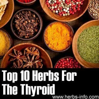 herbs that dissolve thyroid tumors picture 2