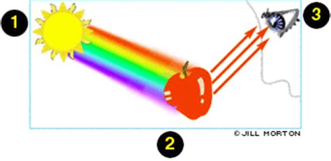 why do we observe colour and consistency of picture 9