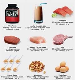 diet protein picture 13