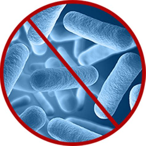 anti microbial picture 7