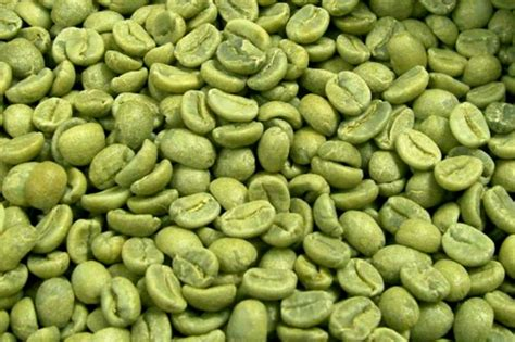 where can i get natural green coffee beans picture 9