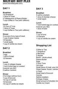 sample of 3-hour diet picture 17