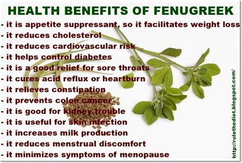 benefits of fenugreek extract picture 1