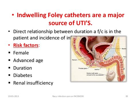 neonatal indwelling bladder catheters picture 7