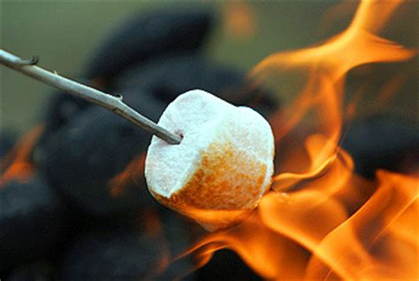 can marshmallows be toasted on the real flame picture 7