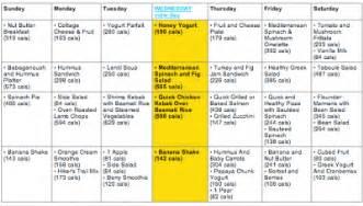 atkins diet menu plan picture 13