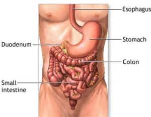 back pain caused by colon tumor picture 7