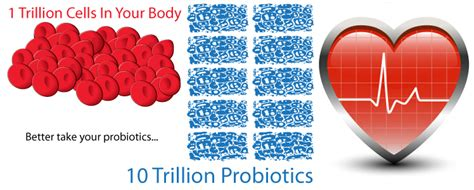 can probiotics lower blood pressure picture 1