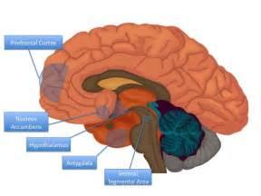 addictions aging alternative medicine beauty disease picture 2