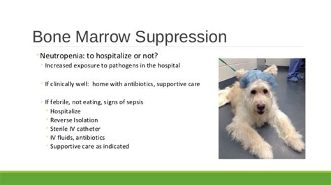 symptoms of bone marrow suppression picture 5