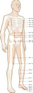 accupressure point for liver picture 14