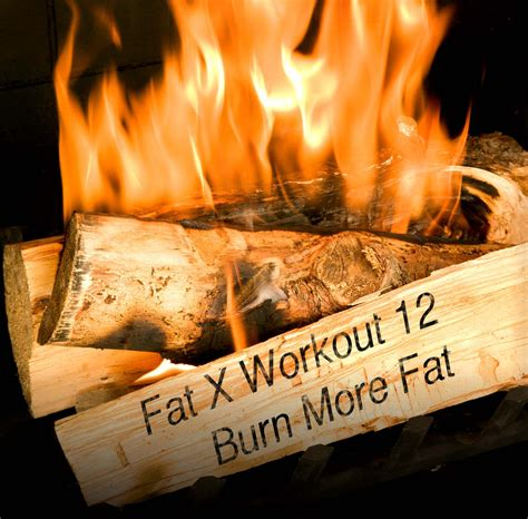 fat burning tips picture 10
