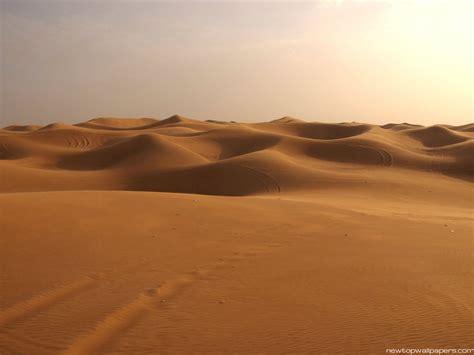 desert picture 11