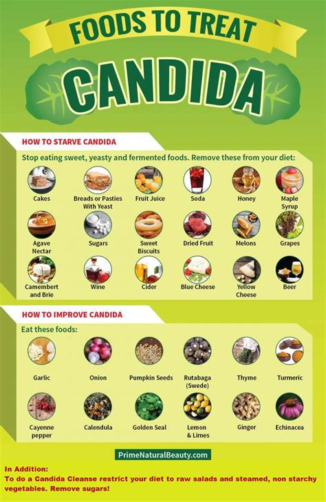 daily foods to eat on candida diet picture 10