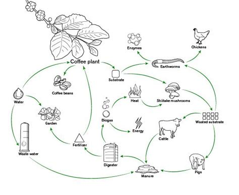 methane production from anaerobic digestion van der berg picture 1