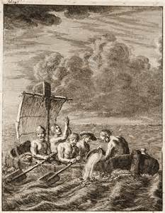 barbary slavedriver picture 6