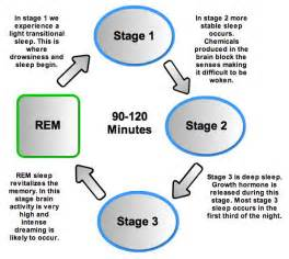 causes of disturbance of rem sleep picture 1