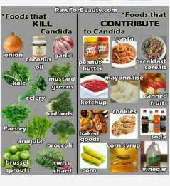 daily foods to eat on candida diet picture 8