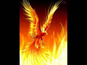 how can individuals buy phoenix lipovicine picture 10