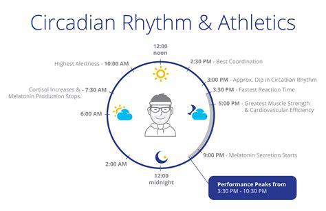 circadian sleep rhythm picture 14