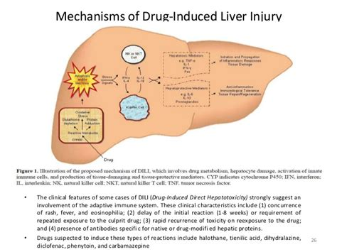 drug induced liver damage and chills picture 13