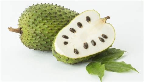 can soursop leaves cure fibroid picture 14