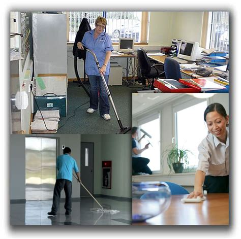 home cleaning business picture 11