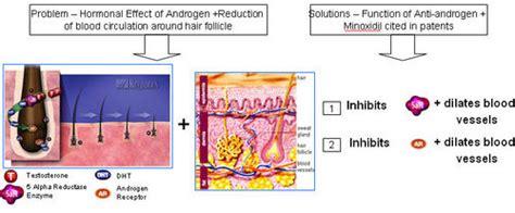 antiandrogen herbs picture 13