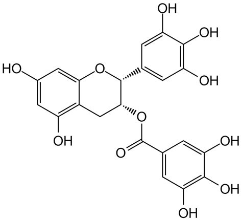 dmso and green tea picture 11