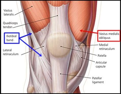 female knee joint replacement picture 11
