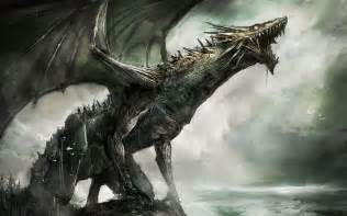 dragon picture 7