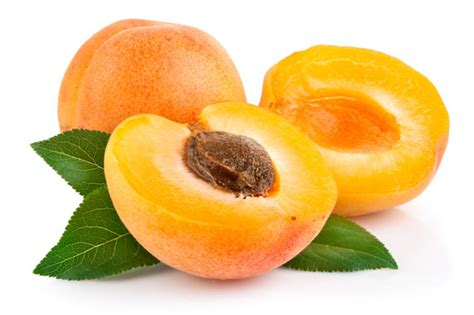 apricots health picture 17
