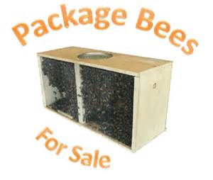 package bees for sale louisiana picture 1